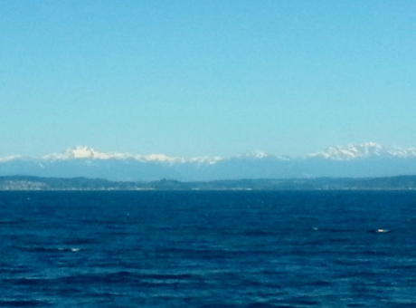 Puget Sound, Olympic Peninsula, and Olympic Mountains. (I know I keep promising to use a good camera for my nature shots instead of my phone...)