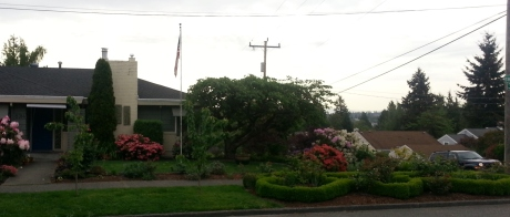 The rose garden is not yet in bloom. It can be seen in the right foreground of the photo. Also, the other side of the house has prettier plants but that was where the woman was working. I took this photo from across the street. I may be a spy, but I am not a stalker.