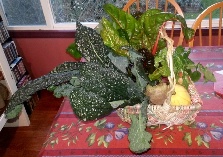 Jann's Christmas present to me. A basket of health that she grew with her own hands.