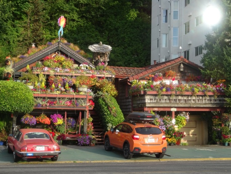 "The ""flower houses"" at Alki Beach."