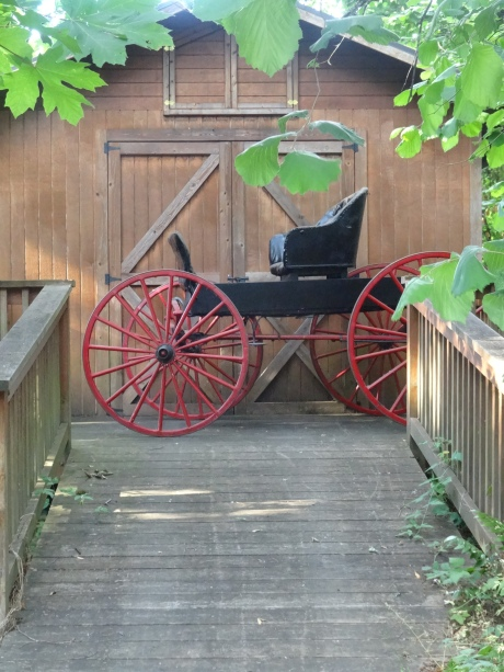 My parent's antique physician's buggy. My dad built the building for it as well as a number of other buildings on the property.