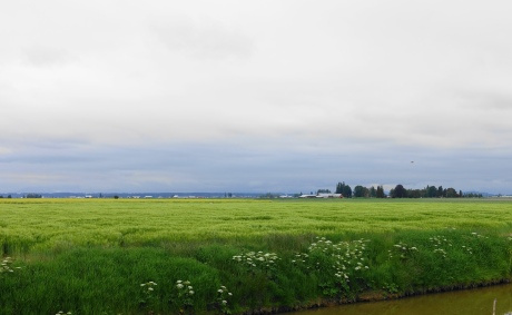 The gentle farmland is decidedly not nightmarish.